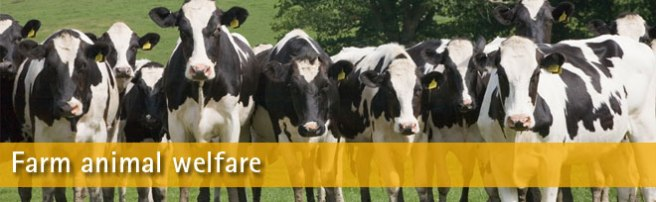 farm-welfare-banner